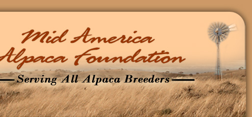 Mid America Alpaca Foundation - Serving All Alpaca Breeders